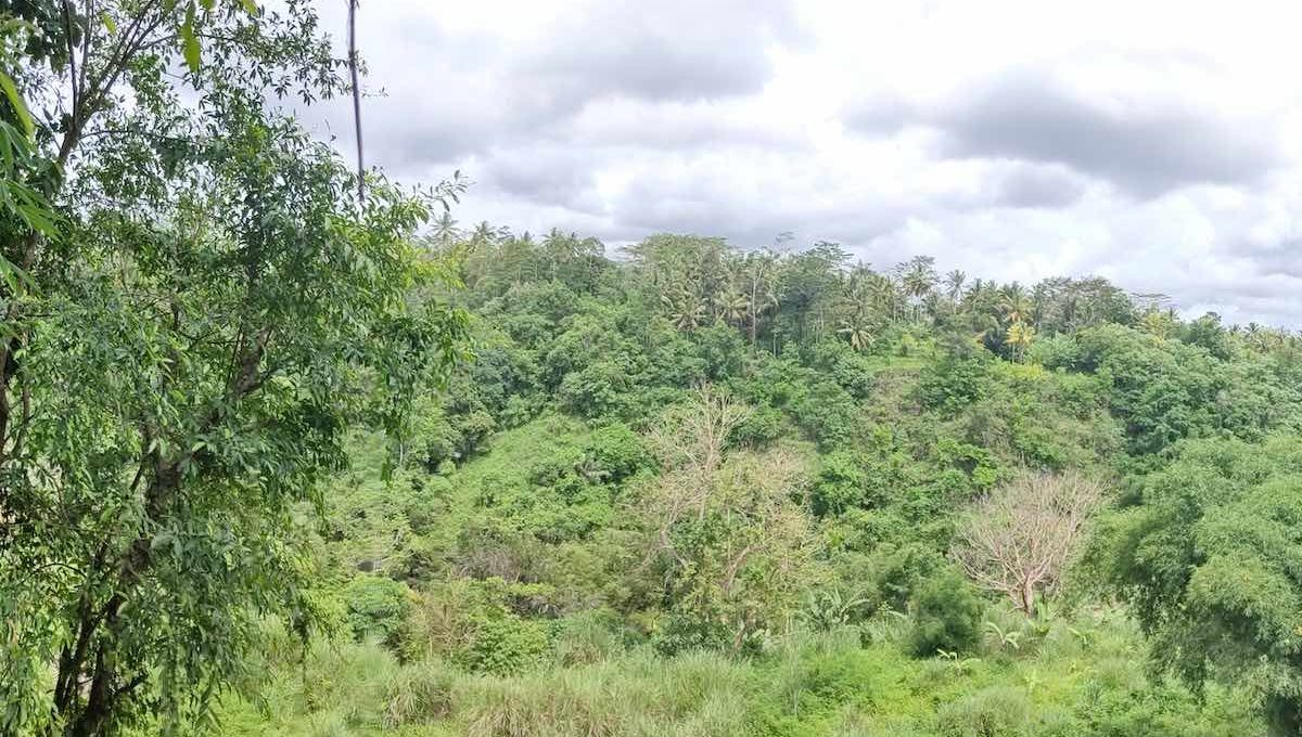 8 are plot for lease in Gianyar-3