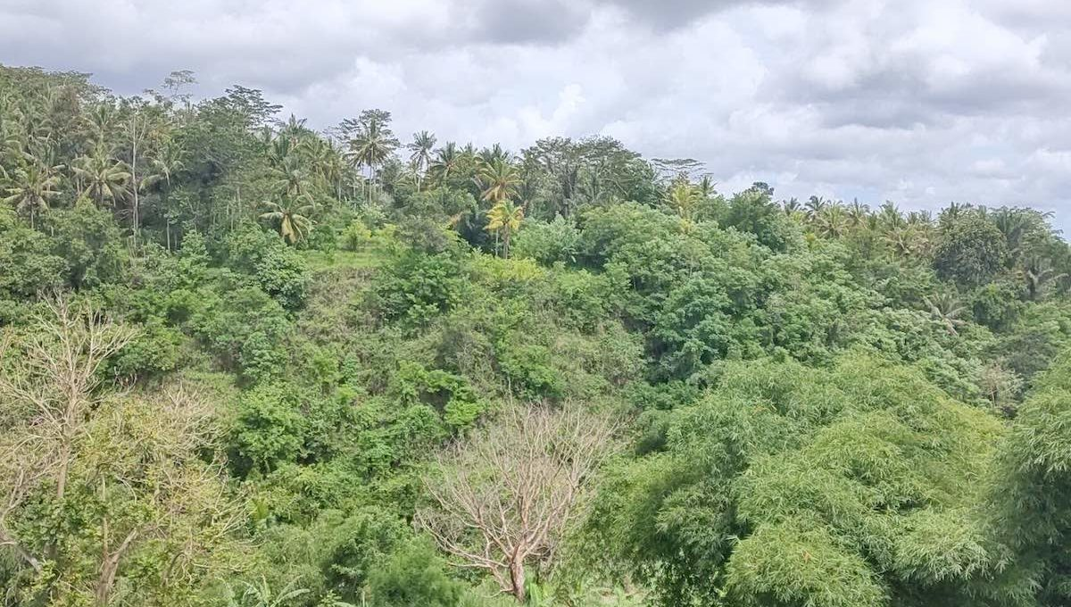 8 are plot for lease in Gianyar-4
