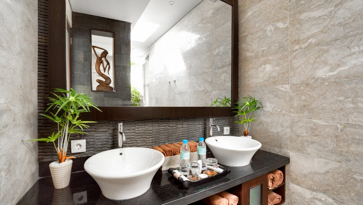 dgv1 bathroom_1