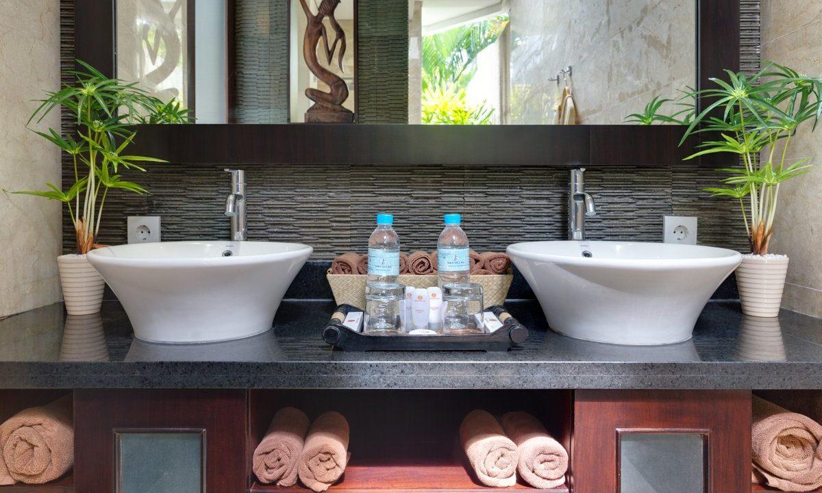dgv1 bathroom_5