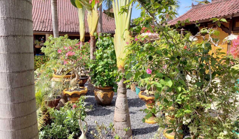 Bali-villa-for-sale-gsm-17