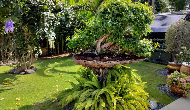 Bali-villa-for-sale-gsm-23
